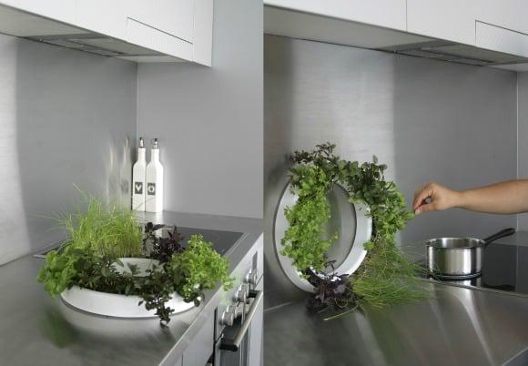 Hierbas arom ticas en la cocina de mil y una formas deco for Cocinas enteras