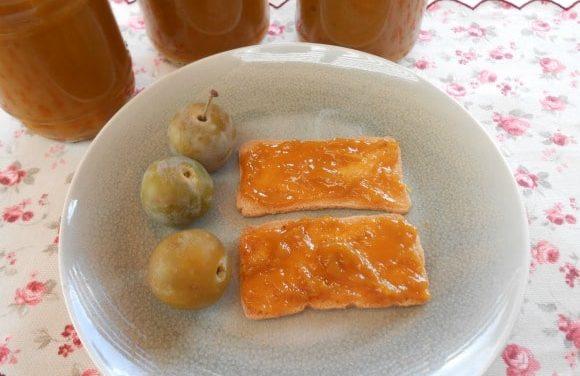 Receta de mermelada de ciruelas (sin azúcar ni endulzantes)