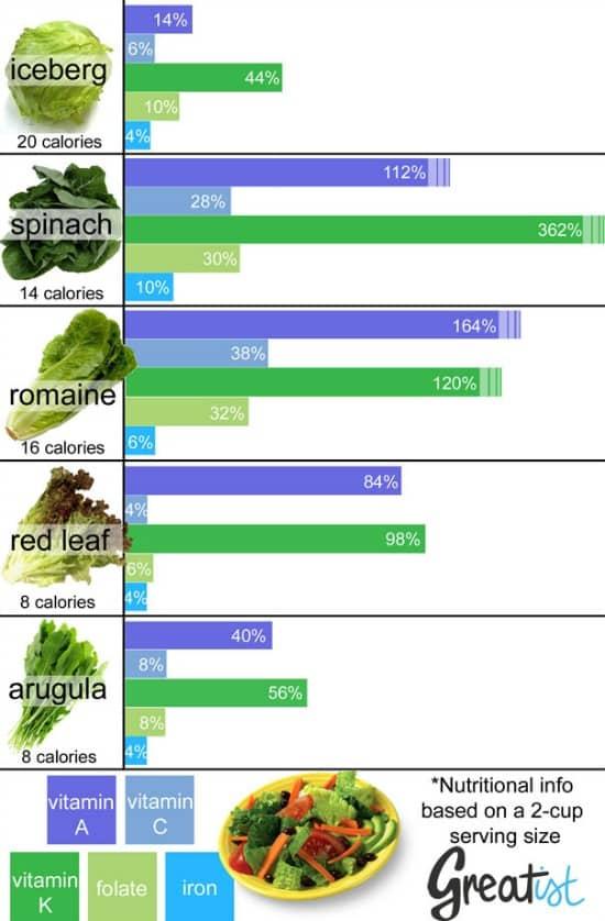 ¿Qué tipos de lechugas son las más sanas? (infografías)