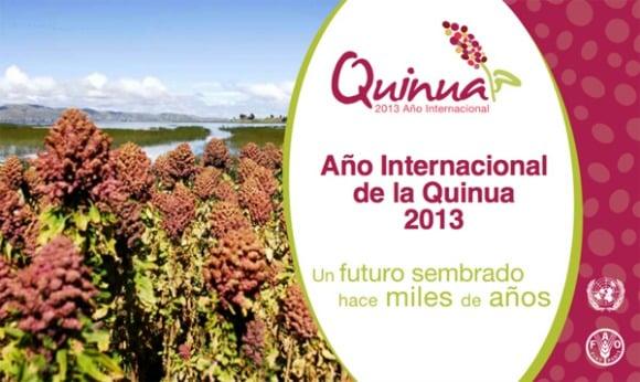 2013-año-internacional-de-la-quínoa.