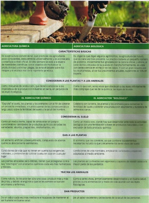 Agricultura química vs agricultura biológica: las 6 diferencias