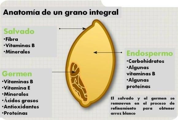 GranoArroz-1024x681