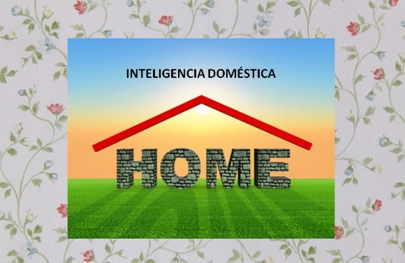 inteligencia doméstica
