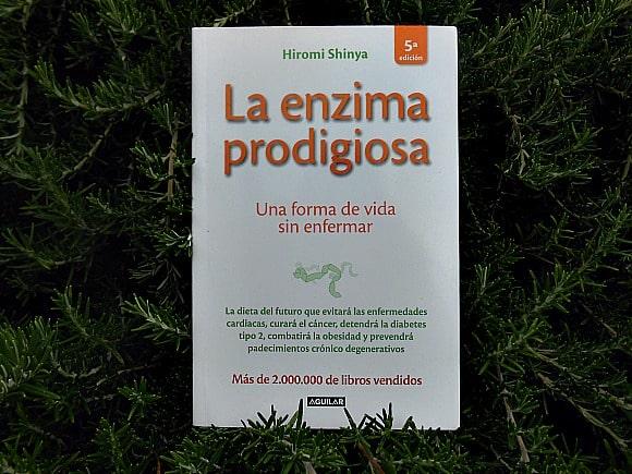enzima prodigiosa