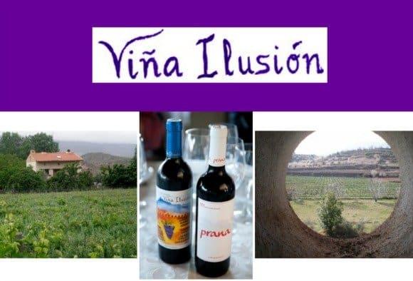 """""""El vino ecológico se parece más al vino que elaboraban nuestros antepasados"""" Entrevista a Martín Alonso, eco-viticultor"""